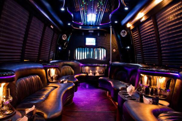 15 Person Party Bus Rental Arlington