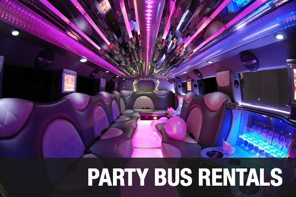Party Bus Rentals Arlington